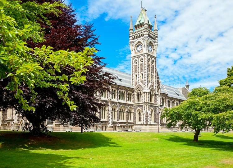 University_Otago_Education_Teritary.jpg