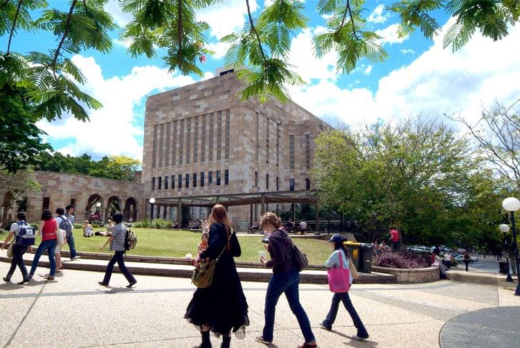 Story-SAFM-University-of-Queensland-2